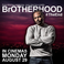 Image 8: BROTHERHOOD RELEASE DATE